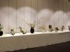 Выставка Икэнобо. 2017 год