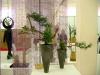 Выставка Нихон но Би. 2008 год